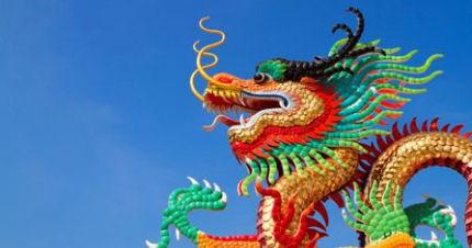 Image result for dragon festival