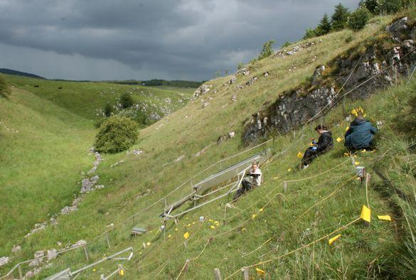 Semi-natural grassland plots at Buxton Climate Change Impacts Lab