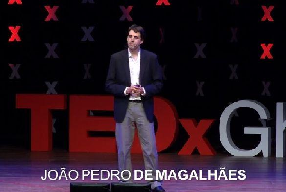 Dr João Pedro de Magalhães
