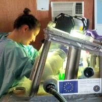 Natasha processing samples1