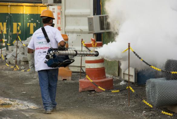 A pest controller in Brazil