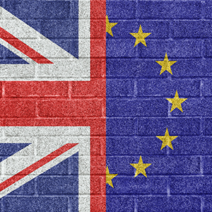 Brexit wall texture