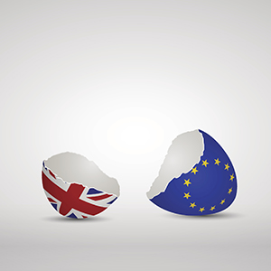 Brexit Cracked eggs