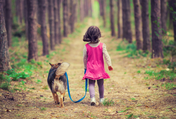 child walking pet dog