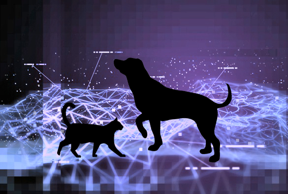 Big-data-animal-health