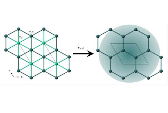 Due to the local terbium environment in TbInO3, a honeycomb lattice of terbium spins emerges in the crystal structure upon cooling