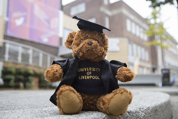 National Student Survey University of Liverpool 2019