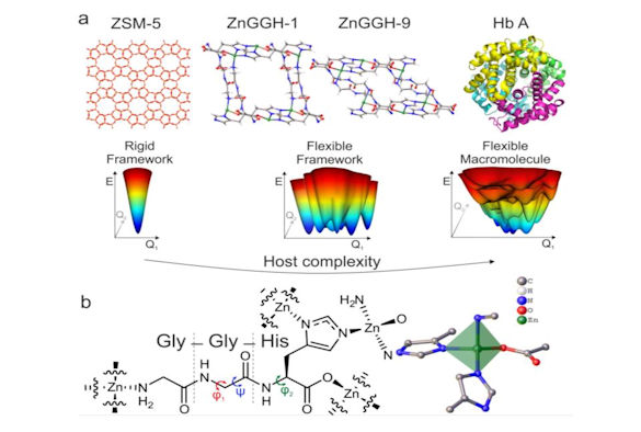 Figure 1 The structural flexibility of ZnGGH in the context of a conformational energy landscape